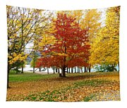 Fall In Kaloya Park 5 Tapestry