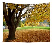 Fall In Kaloya Park 8 Tapestry