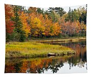 Maine Fall Tapestry