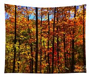 Fall In Ontario Canada Tapestry