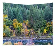 Fall In Spokane Tapestry