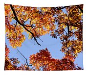 Fall Oak Leaves Up Above Tapestry