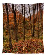 Fall On The Ice Age Trail Tapestry