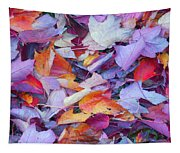 Fall Purples  Tapestry