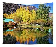 Fall Reflections At The Double Eagle Tapestry