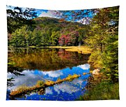 Fall Reflections On Cary Lake Tapestry