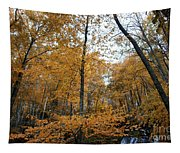Fall Tees At  Yankee Horse Overlook   Tapestry