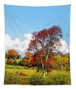 Fall Trees In Country Field Tapestry
