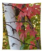 Fall View Tapestry