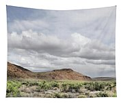 Fallon Clouds-1478-r1 Tapestry