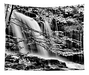 Falls And Trees Tapestry