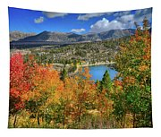 Fall's Finery At Rock Creek Lake Tapestry