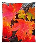 Falltime ...  Tapestry