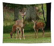 Family Walk Tapestry