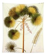 Fan Palm Tapestry
