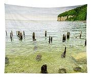 Fayette State Park Shoreline Tapestry