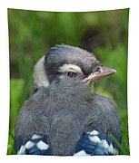 Feathered Jay Tapestry