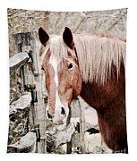February Horse Portrait Tapestry