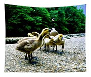 Feed Me Seymore - Baby Geese Tapestry