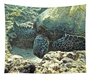 Feeding Sea Turtle Tapestry