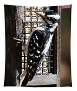 Female Hairy Woodpecker Tapestry