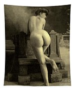 Female Nude, Circa 1900 Tapestry