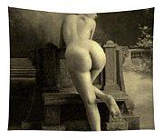 Female Nude, Circa 1900 Tapestry
