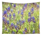 Field Of Blue Lupines  Tapestry