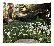 Field Of Daisies In Tahoe Tapestry