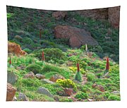 Field Of Echium Wildpretii In The Teide National Park Tapestry
