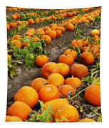 Field Of Pumpkins Card Tapestry