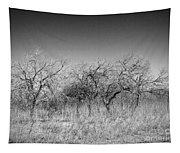 Field Of Trees Tapestry