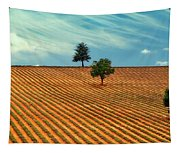 Fields Of Provence Tapestry