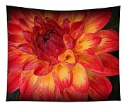 Fiery Red And Yellow Dahlia Tapestry
