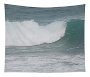 Fin Wave Tapestry