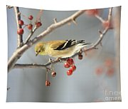 Finch Eyeing Seeds Tapestry