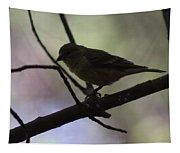 Finch Shadow 042814b Tapestry