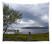 Finnmark Panorama Tapestry