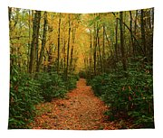 Fire Road Up Mount Minsi Tapestry