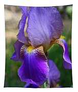 First Iris Tapestry