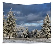 First Snow Of The Year Tapestry
