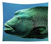 Fish Lips Tapestry