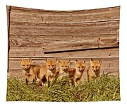Five Fox Kits By Old Saskatchewan Granary Tapestry