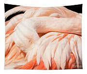 Flamingo Abstract Tapestry