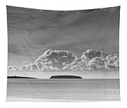 Flat Holm And Steep Holm Mono Tapestry