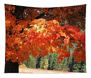 Flickering Sunlight Tapestry