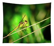 Flight Clearance Tapestry