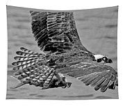 Flight Of The Osprey Bw Tapestry