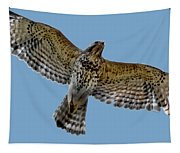 Flight Of The Red Shouldered Hawk Tapestry