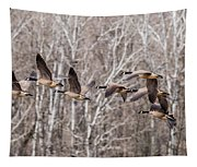 Flock Of Geese Tapestry